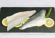 Sea bass fillets Royalty Free Stock Image