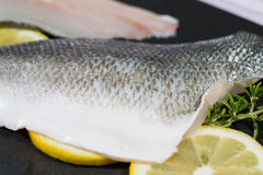 Sea bass fillets Royalty Free Stock Photo