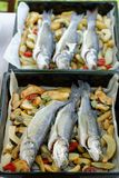 Sea-bass fish with baked potatoes Stock Photo