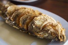 Sea Bass fish deep fried Royalty Free Stock Photo