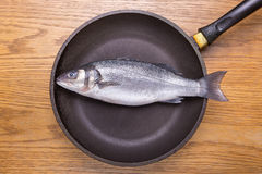 Sea bass fish in a frying pan, healthy food. top view. Sea bass fish in a frying pan top view, healthy food, diet. top view stock image