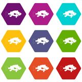 Sea bass fish icon set color hexahedron. Sea bass fish icon set many color hexahedron isolated on white vector illustration Stock Image