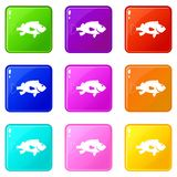 Sea bass fish icons 9 set. Sea bass fish icons of 9 color set isolated vector illustration Stock Images