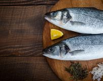 Sea bass fish. Two sea bass fish on cutting board Royalty Free Stock Photo