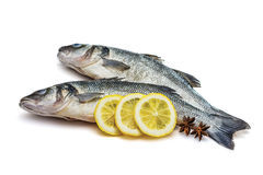 Sea bass fish. Whit lemon and star anise on withe background royalty free stock photo