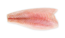 Sea bass. Fresh fillet of sea bass on a white background Stock Photos