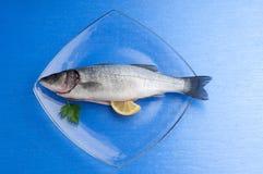 Sea-bass with lemon. On dish stock photos