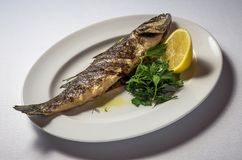 Sea bass with lemon and herbs royalty free stock image