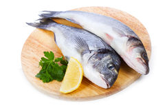 Sea bass with lemon and parsley Royalty Free Stock Image