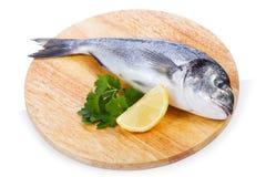 Sea bass with lemon and parsleyon Stock Image