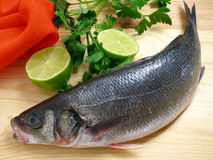 Sea bass with lime. Sea bass on the cutting board with lime stock photography
