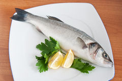 Sea bass with parsley and lemon Stock Photos