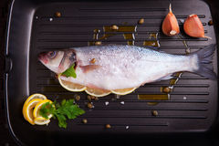 Sea bass with parsley. And lemon, ready for cookingr Royalty Free Stock Photo