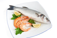 Sea bass with parsley and prawns Royalty Free Stock Photo