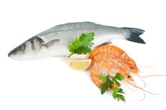 Sea bass with prawns and parsley Royalty Free Stock Image