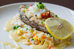 Sea Bass with Rice Royalty Free Stock Photo