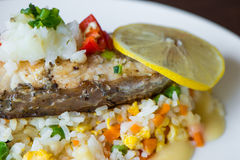 Sea Bass with Rice Stock Image
