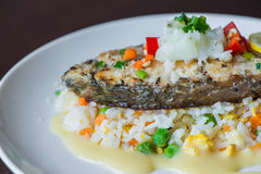 Sea Bass with Rice Royalty Free Stock Image