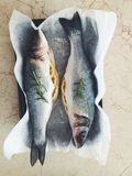 Sea bass with rosemary Stock Photography