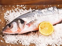 Sea bass with salt. On awooden board royalty free stock photography