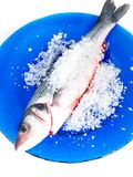 Sea bass with salt. On a blue plate royalty free stock images