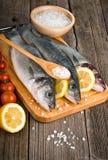 Sea Bass with salt Stock Image