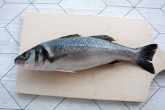Sea bass. Fresh fish on the table Stock Photography