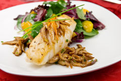 Sea bass with shiitake mushrooms. Pan seared Chilean sea bass with shiitake mushrooms and salad stock photography