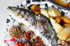 Sea bass with vegetables. On table Royalty Free Stock Photography