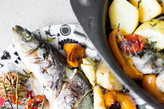 Sea bass with vegetables Stock Photos