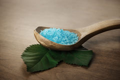 Sea bath salt Stock Photography
