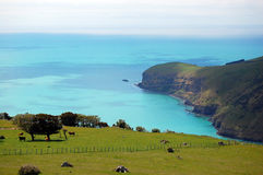 Sea bay view rural area Royalty Free Stock Images