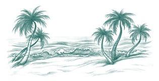 Sea beach. Tropic sea beach with the palms Royalty Free Stock Photo