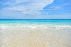 Sea and Beach background Stock Image