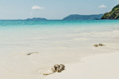 Sea beach blue sky sand sun daylight relaxation landscape viewpo Stock Photos