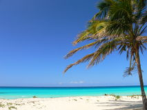 Sea and beach in Caribbean Stock Photos