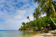 Sea and beach with coconut palm  and houses Royalty Free Stock Images
