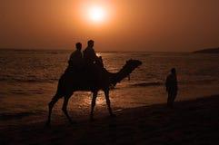 Sea Beach of Gujarat Royalty Free Stock Photo