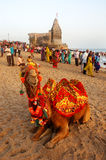 Sea Beach of Gujarat Stock Image