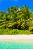 Sea, beach and jungle stock photos