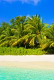 Sea, beach and jungle Royalty Free Stock Image
