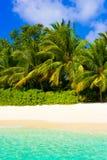 Sea, beach and jungle Stock Photography