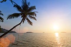 Sea beach with palm tree. Nature. Stock Photos