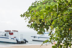 Sea beach rain showers Royalty Free Stock Photo