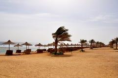Sea beach. The Red Sea. Egypt. Marsa Alam Stock Photos