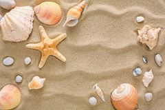 Sea beach sand and seashells background, natural seashore stones and starfish. Sea beach sand background with seashells and starfish, top view. Natural seashore Stock Photo