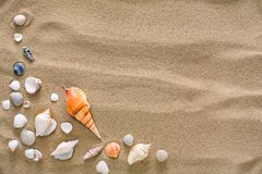 Sea beach sand and seashells background, natural seashore stones and starfish. Sea beach sand background with seashells and starfish, top view. Natural seashore Royalty Free Stock Image