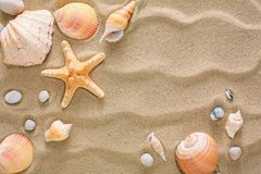 Sea beach sand and seashells background, natural seashore stones and starfish. Sea beach sand background with seashells and starfish, top view. Natural seashore Stock Images