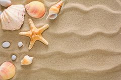Sea beach sand and seashells background, natural seashore stones and starfish. Sea beach sand background with seashells and starfish, top view. Natural seashore Royalty Free Stock Photography