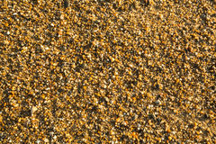 Sea beach sand with pebbles texture. Nature. Stock Photography